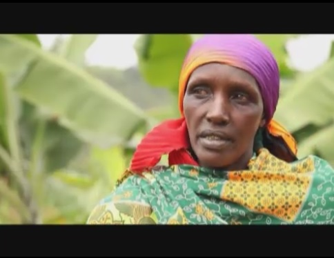 Feeding the Future 10: Action in Africa